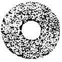 Gicleur STEINEN 4,50G 45° SS